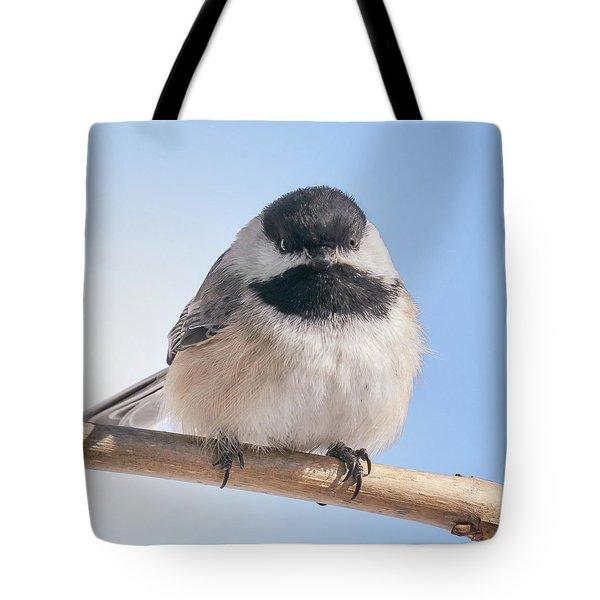 Chickadee At 5 Below Tote Bag