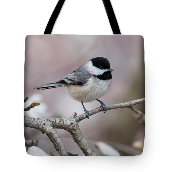 Tote Bag featuring the photograph Chickadee - D010026 by Daniel Dempster