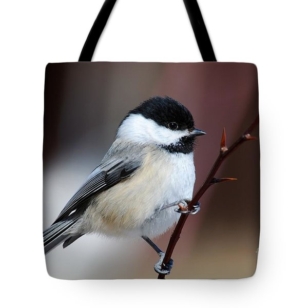 Chickadee Dee Dee Tote Bag by Sandra Updyke