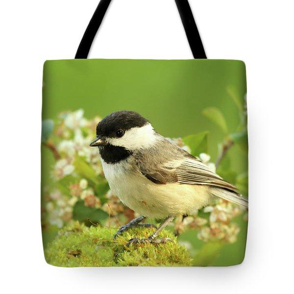 Chickadee Mossy Spring Perch Tote Bag