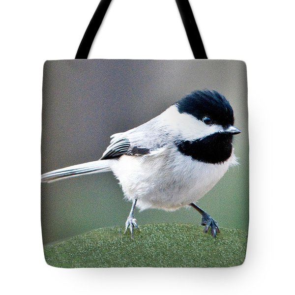 Chickadee Profile Perched 944 Tote Bag