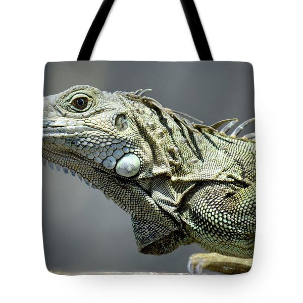Chicken Of The Trees Tote Bag