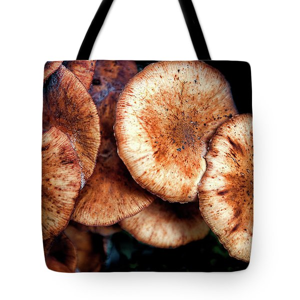 Chicken Of The Woods Tote Bag