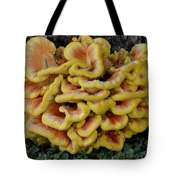Chicken Of The Woods Tote Bag by Randy Bodkins