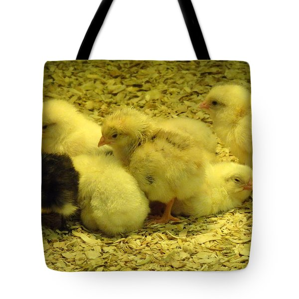 Tote Bag featuring the photograph Chicks by Laurel Best