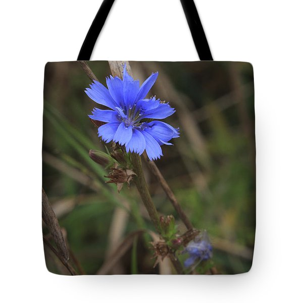 Tote Bag featuring the photograph Chicory by Gary Hall