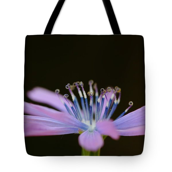 Chicory Tote Bag by Richard Patmore