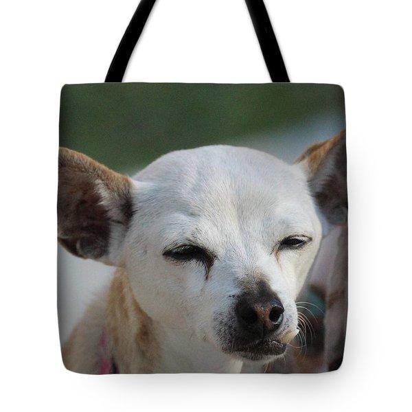 Chihuahua Snaggle Puss  Tote Bag