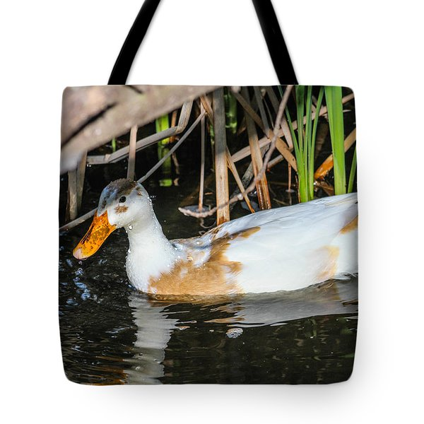 Chilling Tote Bag by Robert Hebert