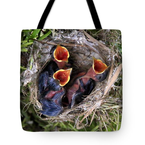 Children Already Born Tote Bag