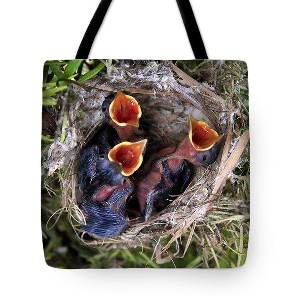 Children Already Born Tote Bag