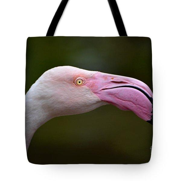 Chilean Flamingo Portrait Tote Bag