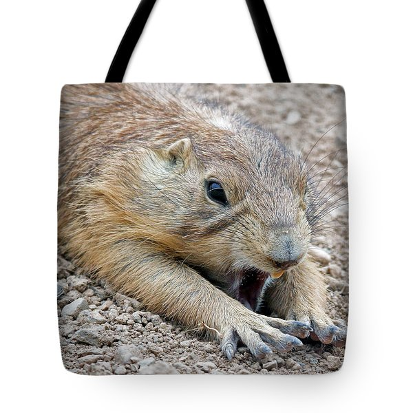 Chillin' Prairie Dog Tote Bag