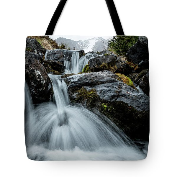 Tote Bag featuring the photograph Chilly Spring Shower by Tim Newton