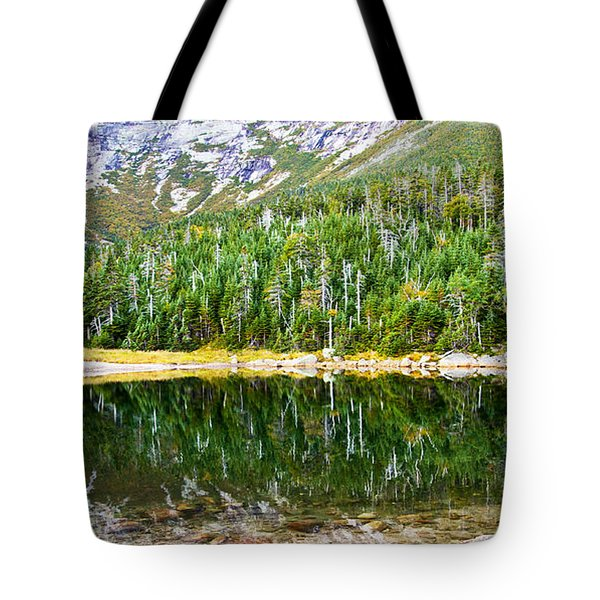 Chimney Pond Reflections 2 Tote Bag by Glenn Gordon
