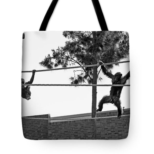 Tote Bag featuring the photograph Chimps In Black And White by Miroslava Jurcik