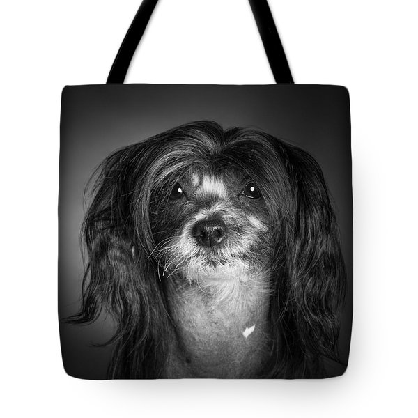 Tote Bag featuring the photograph Chinese Crested - 02 by Larry Carr