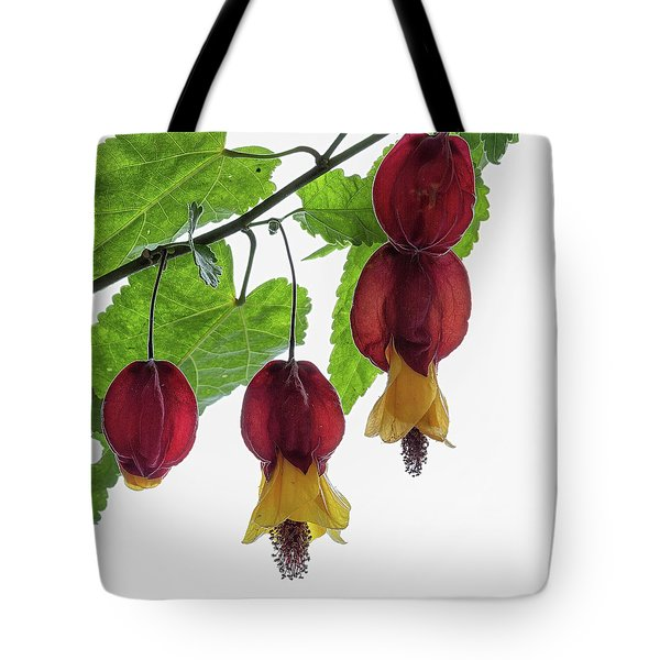 Chinese Lantern 4 Tote Bag by Shirley Mitchell