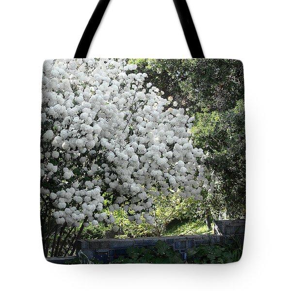 Chinese Snowball Bush Tote Bag