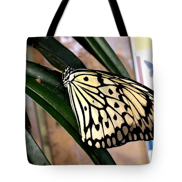 Chinese Yellow Swallowtail Tote Bag