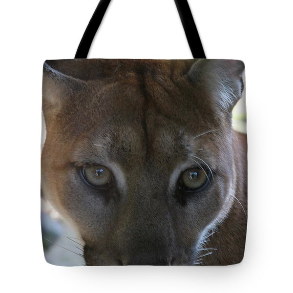 Tote Bag featuring the photograph Chinook by Laddie Halupa