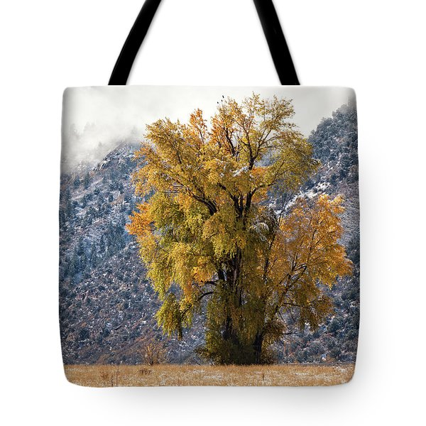 Chipeta And Cottonwood Tote Bag