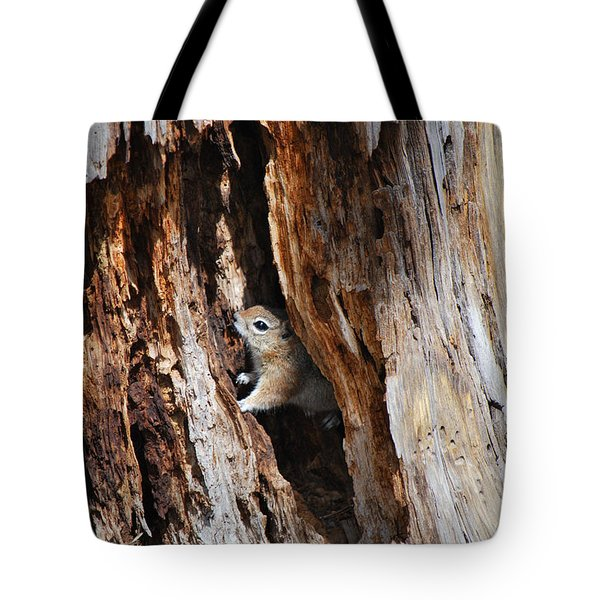 Chipmunk - Eager Arizona Tote Bag by Donna Greene