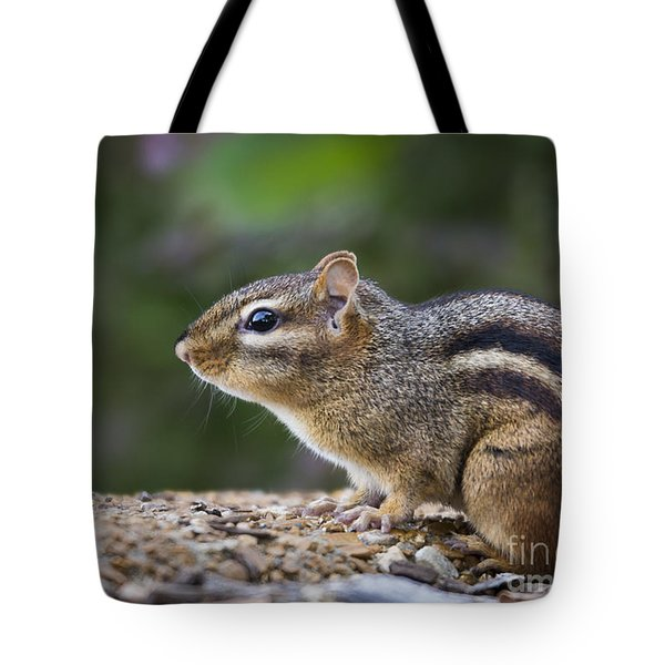 Chipmunk   Tote Bag by Andrea Silies