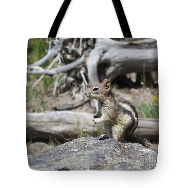 Chipmunk At Yellowstone Tote Bag