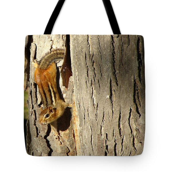 Chipmunk In Fall Tote Bag