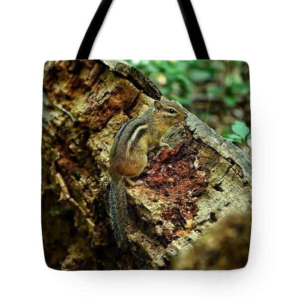Tote Bag featuring the photograph Chipmunk by Nikki McInnes