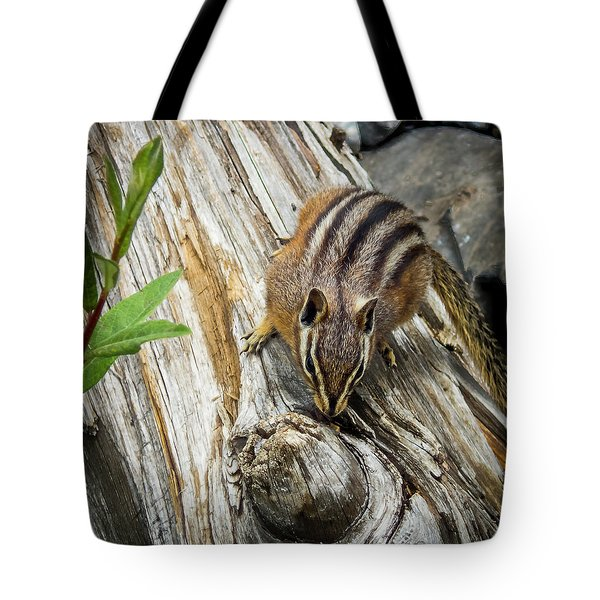 Chipmunk On A Log Tote Bag