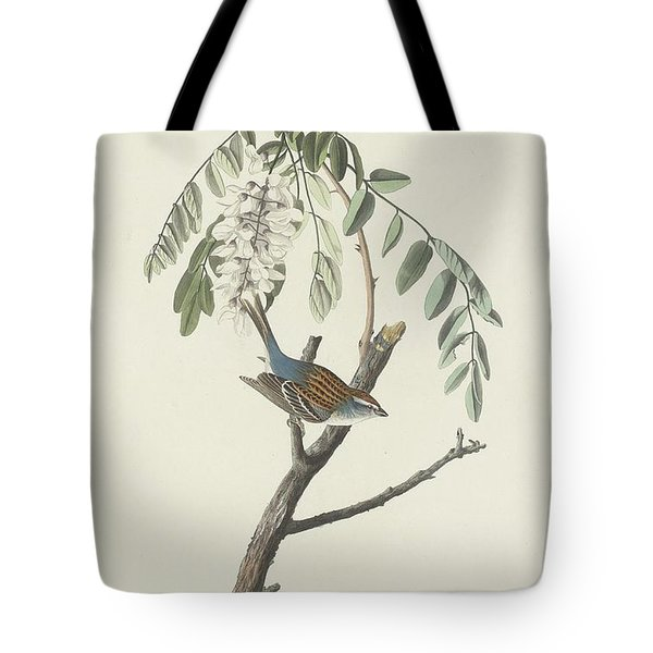 Chipping Sparrow Tote Bag by Rob Dreyer