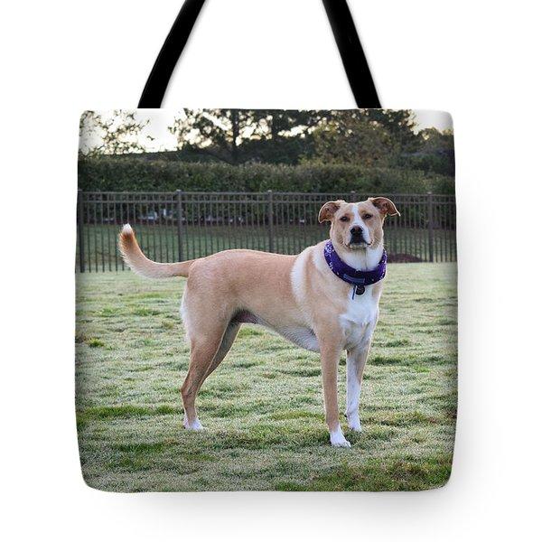Chloe At The Dog Park Tote Bag