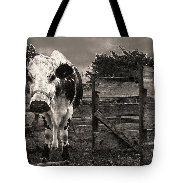 Chocolate Chip At The Stables Tote Bag