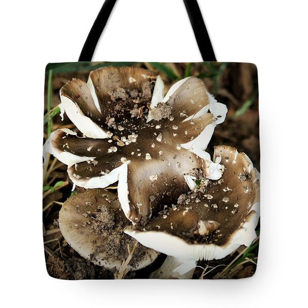 Tote Bag featuring the photograph Chocolate Covered Marshmallow Mushrooms by Sheila Brown