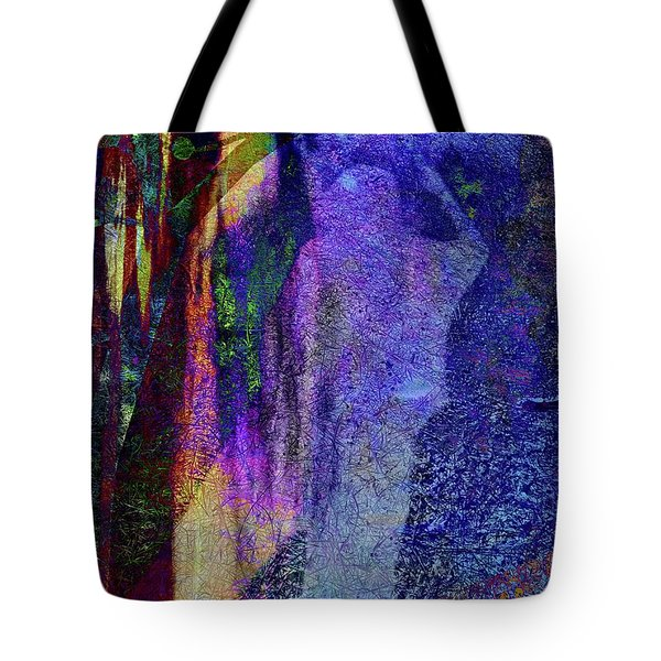 Choices Between Tote Bag
