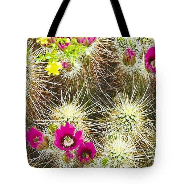 Cholla Cactus Blooms Tote Bag