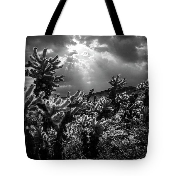 Tote Bag featuring the photograph Cholla Cactus Garden Bathed In Sunlight In Black And White by Randall Nyhof
