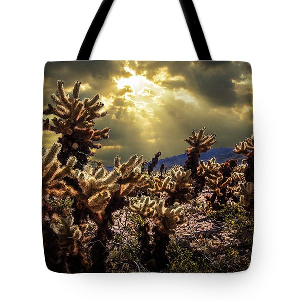 Tote Bag featuring the photograph Cholla Cactus Garden Bathed In Sunlight In Joshua Tree National Park by Randall Nyhof
