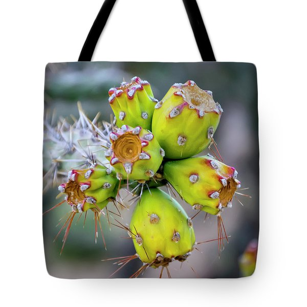 Tote Bag featuring the photograph Cholla Fruit S48 by Mark Myhaver