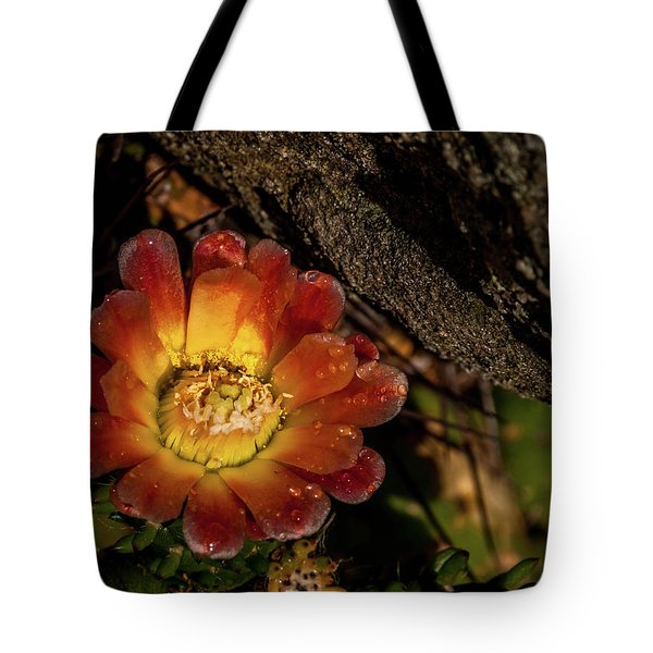 Cholla Tote Bag