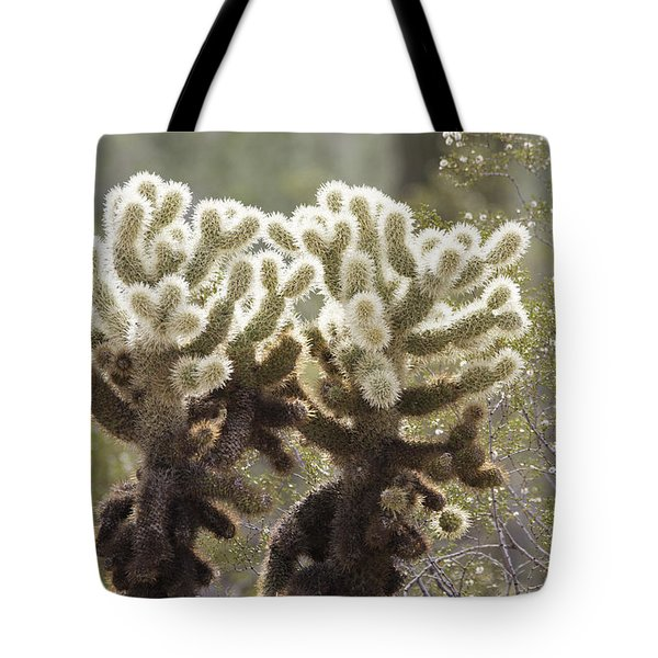 Tote Bag featuring the photograph Cholla Cactus by Anne Rodkin