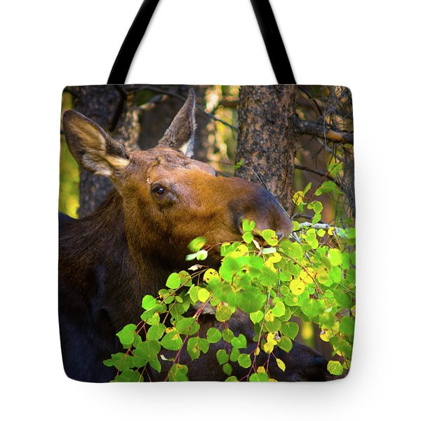 Tote Bag featuring the photograph Chow Time by John De Bord