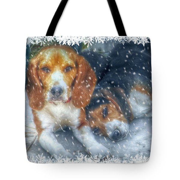 Tote Bag featuring the photograph Christmas Brothers by Amanda Eberly-Kudamik