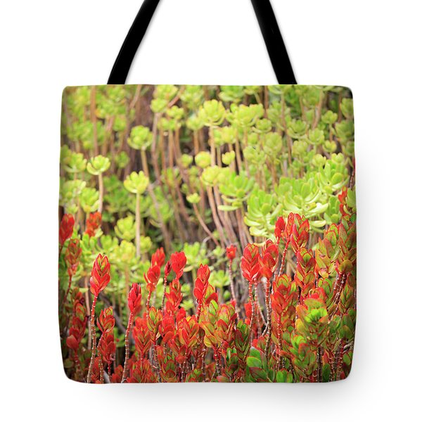 Tote Bag featuring the photograph Christmas Cactii by David Chandler