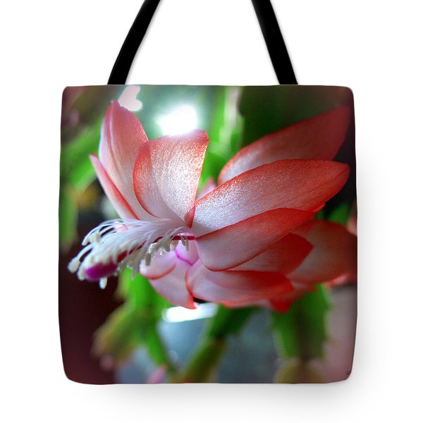 Tote Bag featuring the photograph Christmas Cactus by EricaMaxine  Price