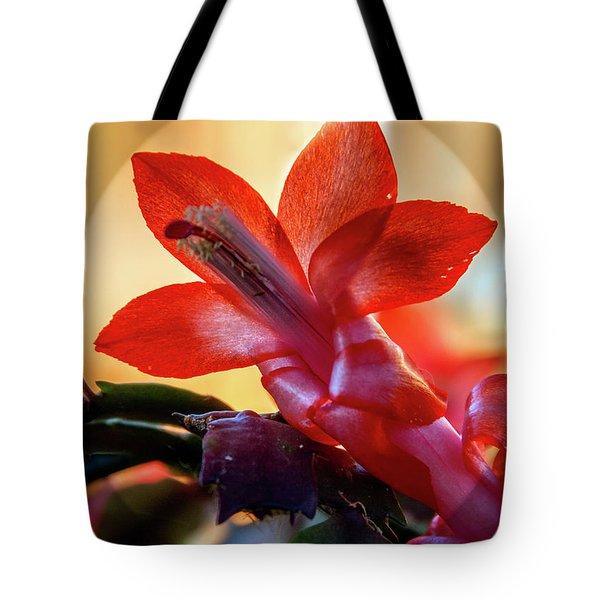 Christmas Cactus Flower Tote Bag