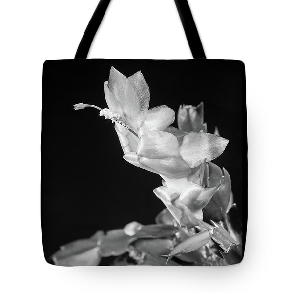 Christmas Cactus On Black Tote Bag by Ed Cilley