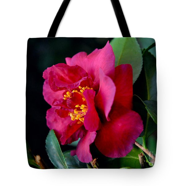 Tote Bag featuring the photograph Christmas Camellia by Marie Hicks
